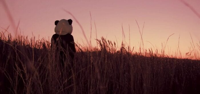 a person in a panda costume walks through a wheat field into the sunset
