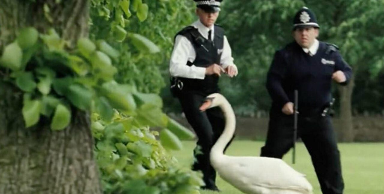 Two police officers chase a goose in Hot Fuzz