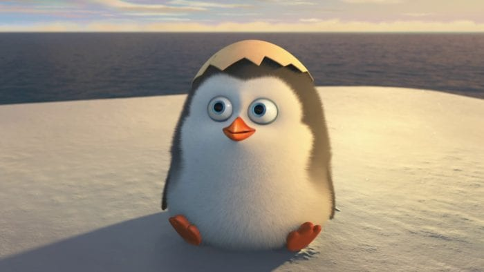 Private as a round, fluffy hatchling with the top of his egg shell resting on his head. He is sitting on an iceberg, the vast ocean stretching behind him.