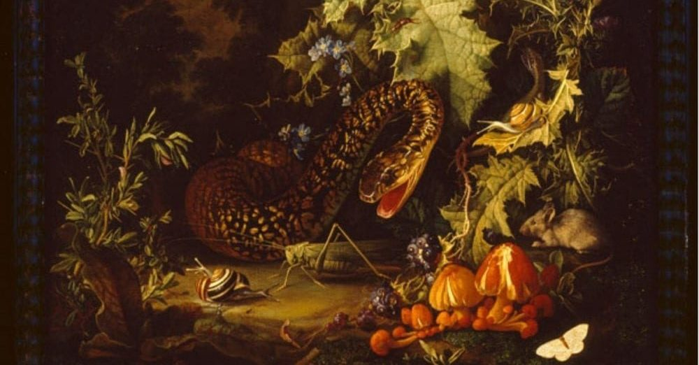 A snake rises up surrounded by flowers on the cover for Deathirl's Fresh Flowers for Ill Fruit